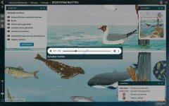 big_BI-EC-1-Ekosystem-Baltyku-S.jpg
